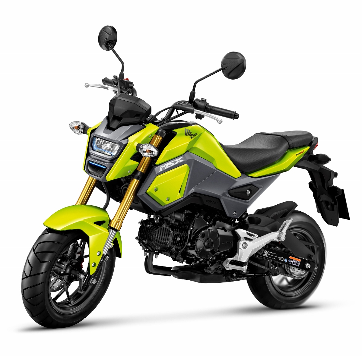 Honda MSX125 Review / Specs - Grom Changes Coming to the USA? | Honda ...