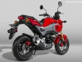 2017 Honda Grom 125 Exhaust - Motorcycle / Mini Bike 125cc