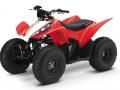 2017 Honda TRX90X ATV Review / Specs - Kids / Youth Four-Wheeler Quad