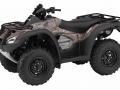 2017 Honda Rincon 680 Camo ATV Review / Pictures & Videos - FourTrax TRX680 Accessproes - Rincon, Rubicon, Foreman, Rancher, Recon