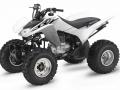 2017 Honda TRX250X Sport ATV / Quad Review of Specs - HP & TQ Performance Rating - TRX250 X / TRX250EX Four Wheeler