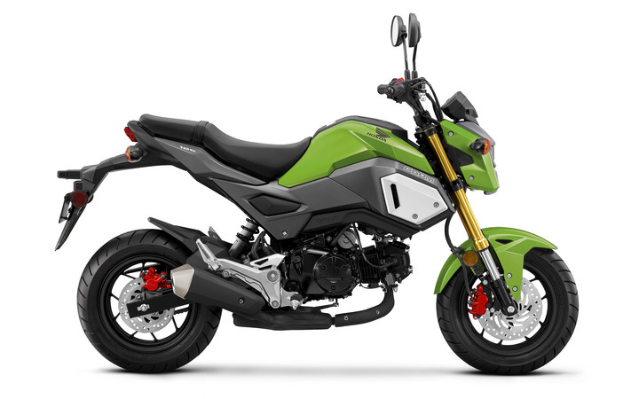 2019 Honda Grom 125 Review / Specs | Motorcycle Buyer's Guide