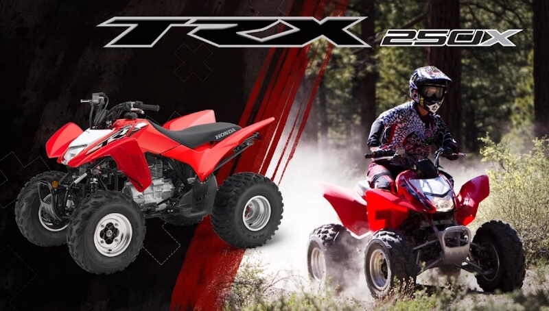 2019 Honda TRX250X ATV Review / Specs / Changes + Buyer's Guide | TRX250 Sport Quad