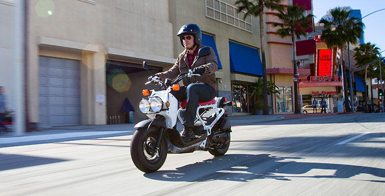 2018 Honda Ruckus Review of Specs / Features | 49cc Scooter