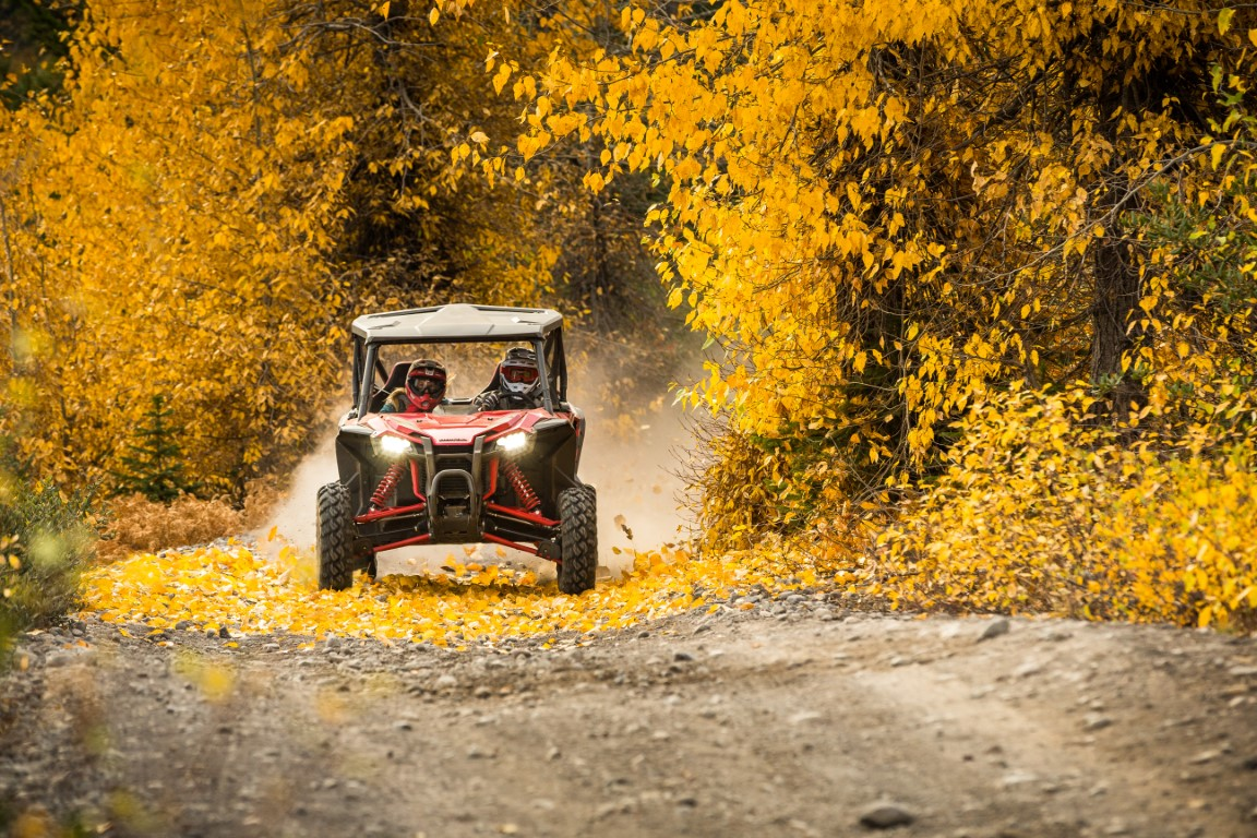 2019 Honda TALON 1000R Woods / Trail Riding | Action Picture
