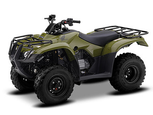 Honda 250 ATV Model Reviews & Specs