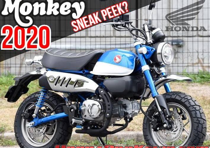 2020 Honda Monkey 125 Sneak Peek Motorcycle Announcement / Release | 125cc Mini Bikes / Motorcycles: Grom, Monkey and Super Cub
