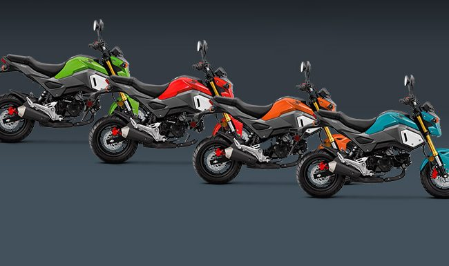 Honda-Pro Kevin | Motorcycles / ATVs / UTVs - News, Reviews, Pictures & Videos, Specs + More!