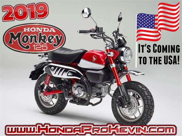 Official 2019 Honda Monkey 125 USA Release