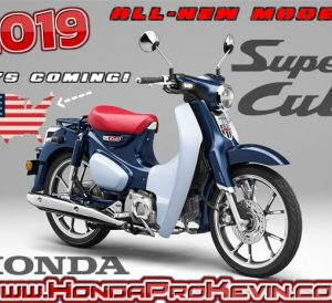 2019 Honda Super Cub 125 USA Release Update   New Scooter / Motorcycle with Automatic Transmission - (C125)