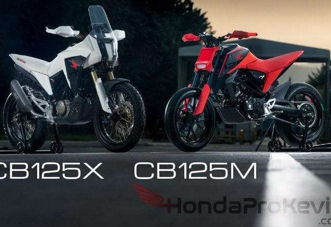 2020 Honda Motorcycles: SuperMoto / Motard & Adventure Bikes   CB125M / CB125X Concept from CB125R
