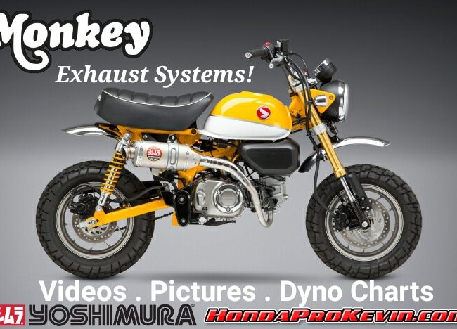 2019 Honda Monkey 125 Exhaust Systems by Yoshimura | Review with HP & TQ Performance Increase + Sound Clip Videos, Pictures and more...