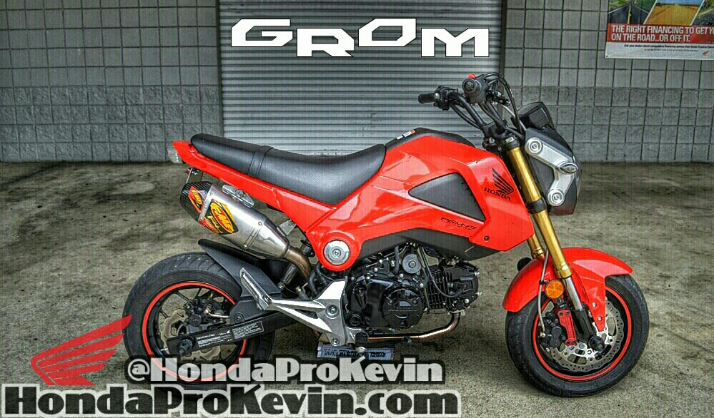 Custom Honda Grom 125 Motorcycle / MSX125 - Chattanooga TN
