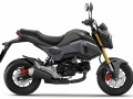 2017 Honda MSX125 Review of Specs - Price - Release Date - Motorcycle / Naked Sport Bike StreetFighter 125cc