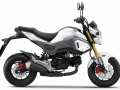 2016 Honda MSX 125 / Grom Review of Specs - Changes - Motorcycle / Naked Bike / StreetFighter
