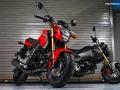 2017 Honda Grom 125 Motorcycle / Mini Bike 125cc