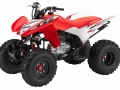 2017 Honda TRX250X Deluxe Sport ATV / Special Edition Quad - HP & TQ Performance Rating - TRX250 X / TRX250EX Four Wheeler