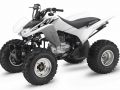 2017 Honda TRX250X Sport ATV / Quad Review of Specs - HP & TQ Performance Rating - TRX250 X / TRX250EX Four Wheeler