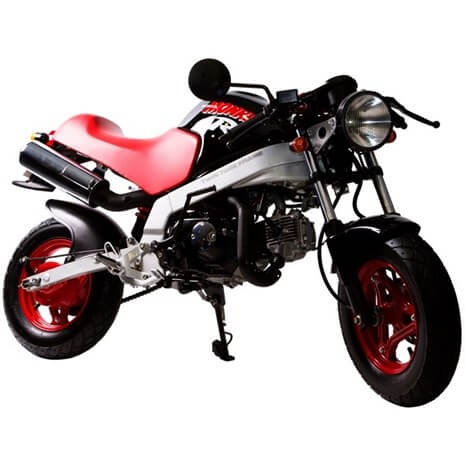 1987 Honda ZB50 Monkey Motorcycle / Mini Bike