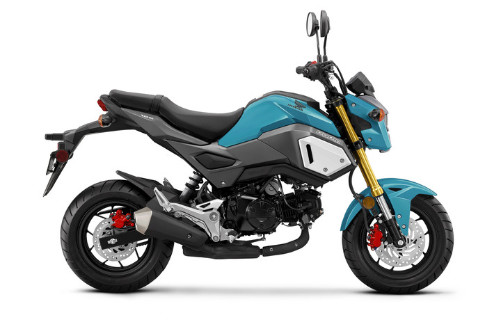 2019 Honda Grom 125 Review / Specs + New Changes!
