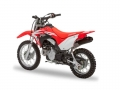 2019 Honda CRF110F Review / Specs + New Changes!