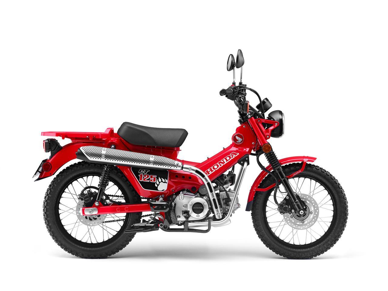 all  scooter sneak peek