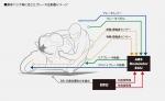 2021 Honda CBR600RR IMU Traction Control / Wheelie / Engine Braking / Power Modes /  ABS + More!