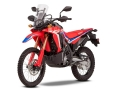 2021 Honda CRF300 RALLY Review / Specs: Price, Release Date, Seat Height + More!