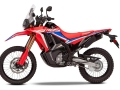 2021 Honda CRF300L RALLY Release Date, Price, Specs, HP / TQ + More!