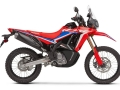 2021 Honda CRF300L Rally Review / Specs + NEW Changes Explained on this 300 cc Dual Sport CRF Motorcycle!