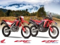 2021 Honda CRF300L  & RALLY Review / Specs + NEW Changes Explained!