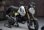 2021 Honda Grom 125 Review / Specs + New Changes! | MSX125