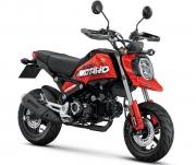 Custom 2021 Honda Grom 125 Motard Motorcycle | MSX125