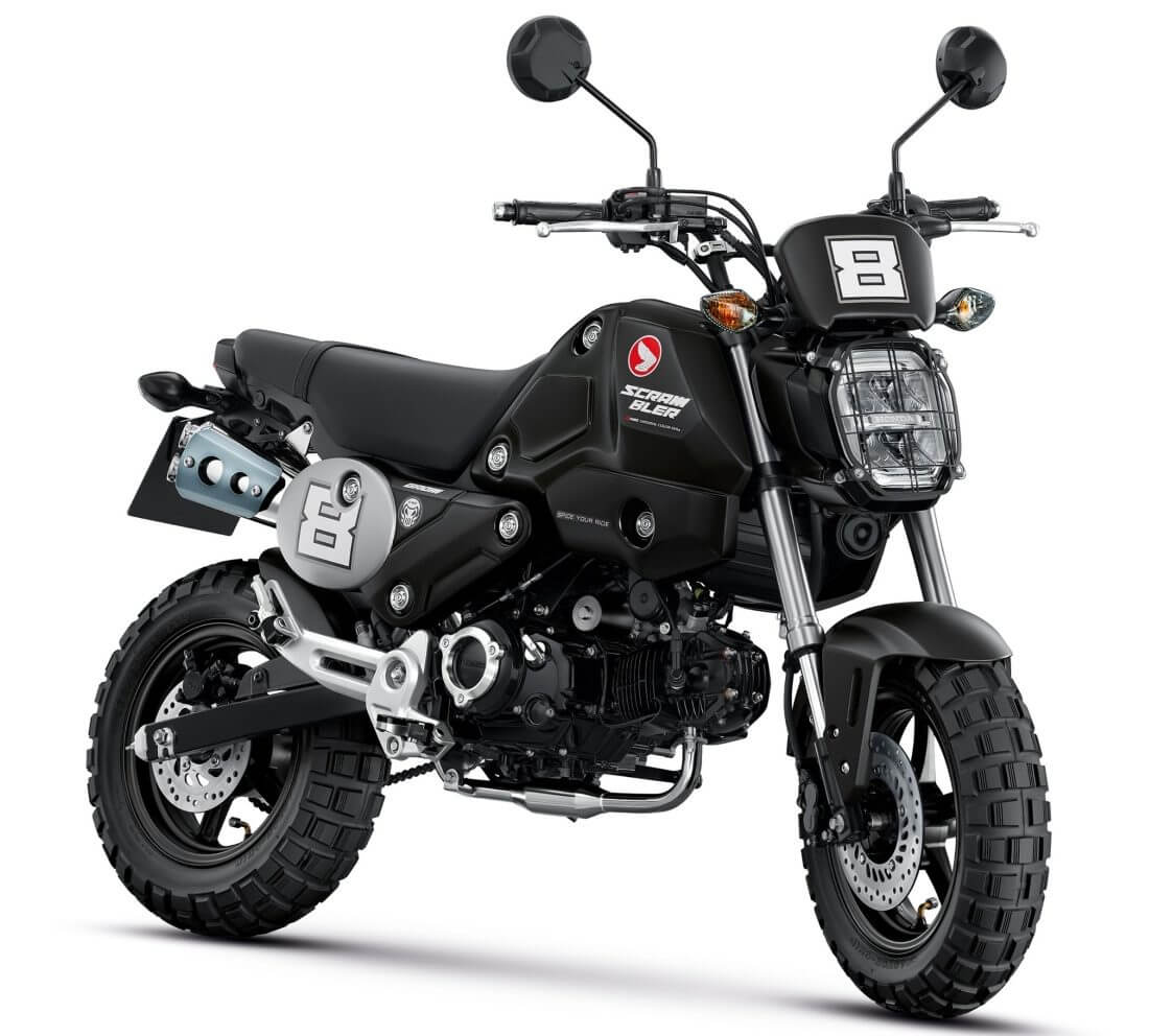 Custom 2021 Honda Grom 125 Scrambler Motorcycle | MSX125
