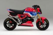 Custom 2021 Honda Grom 125 HRC  Exhaust | Race Bike / Motorcycle | MSX125