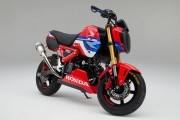 Custom 2021 Honda Grom 125 HRC Race Bike / Motorcycle | MSX125