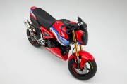NEW 2021 Honda Grom 125 HRC Motorcycle Review / Specs + New Changes Explained!