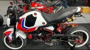 Custom 2022 Honda Grom 125 / MSX125 Pictures