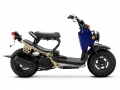 2022 Honda Ruckus Scooter Review / Specs + Changes Explained | Midnight Blue / Tan - NPS50 / 50cc Automatic Scooters