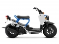 2022 Honda Ruckus Scooter Review / Specs + Changes Explained | Pearl Blue / White - NPS50 / 50cc Automatic Scooters