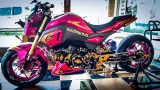 Lowered 2017 Honda Grom / MSX 125 Motorcycle - Mini Naked Sport Bike / StreetFighter - MSX125SF