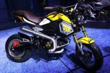 2017 Honda Grom / MSX 125 Motorcycle - Mini Naked Sport Bike / StreetFighter - MSX125SF