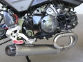 2017 Honda Grom Tyga Low Mount Exhaust - Underbelly Muffler - MSX 125 / MSX125SF / 125cc Motorcycle - Mini Sport Bike / StreetFighter