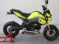 2017 Honda Grom Tyga Exhaust - UnderBody MSX 125 Muffler - MSX125SF / 125cc Motorcycle - Mini Sport Bike / StreetFighter