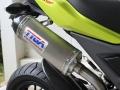2017 Honda Grom Tyga Exhaust - SS / Carbon Fiber Cap Muffler - MSX 125 / MSX125SF / 125cc Motorcycle - Mini Sport Bike / StreetFighter