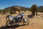 Honda Africa Twin 1000 Review / Specs (CRF1000L) Adventure Motorcycle / Bike - DCT Automatic Option Motorbike