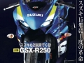 2017 Suzuki GSXR 250 - CBR Sport Bike / Motorcycle - CBR250 / CBR300 / CBR350 Concept