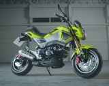 Custom 2016 Honda MSX / Grom Review - Motorcycle / Naked Sport Bike / StreetFighter MSX125