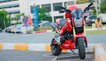 custom-honda-grom-msx125-ducati-exhaust-cowl-plastics-fairings-wheels-motorcycle-mini-bike-3