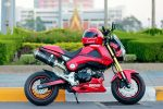custom-honda-grom-msx125-ducati-exhaust-wheels-seat-cowl-plastics-body-fairings-